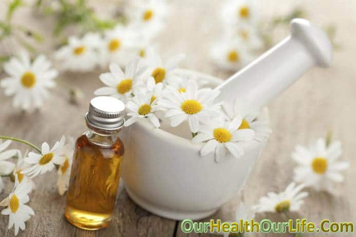Chamomile in pregnancy