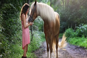Adjusting the Weight of the Riding Horses