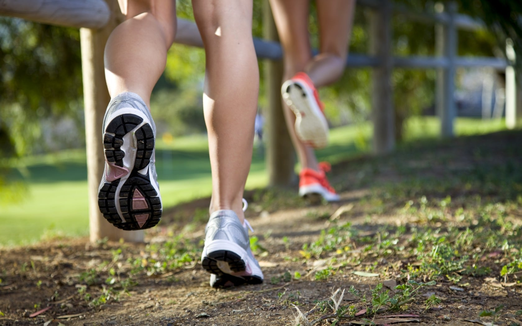 Top 10 Best Neutral Running Shoes for every novice & expert runners